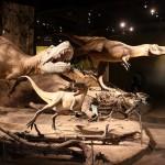 Drumheller dinosaur museum